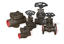 Williams Forged Steel Valves